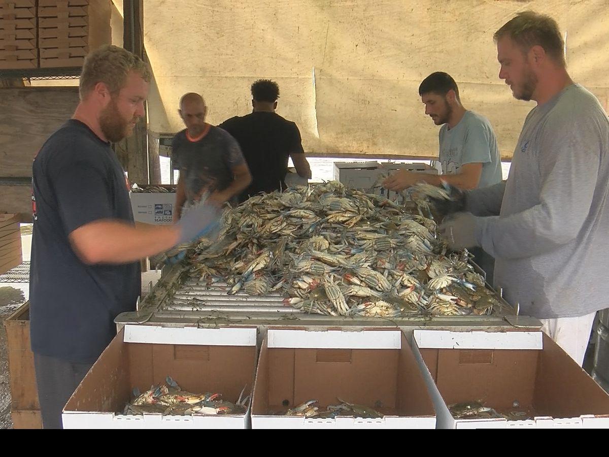 St. Bernard Parish leaders appeal for federal disaster relief money for fishermen
