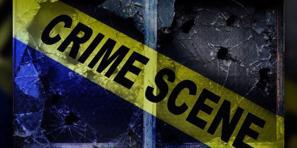 Sheriff: Woman shot to death, suspect turns gun on himself