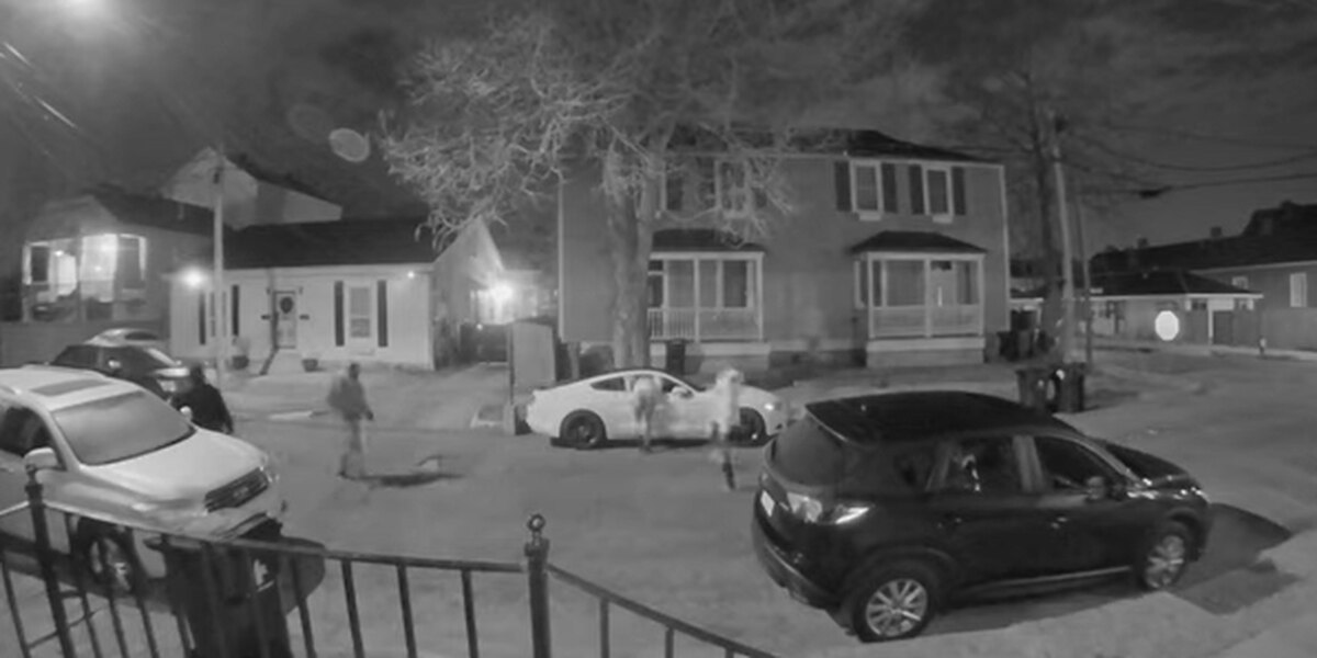 VIDEO: New Orleans police search for car burglars who shot at man