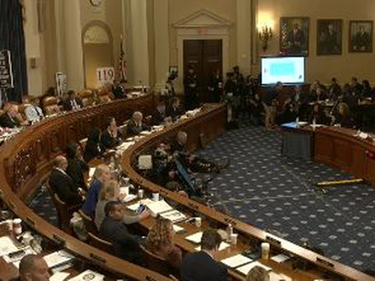 Two members of La's congressional delegation take opposing views during the latest impeachment hearing