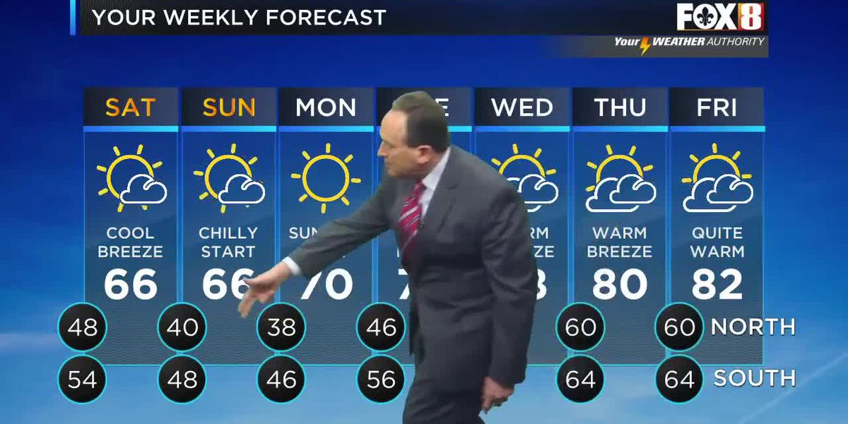 Bruce: Friday afternoon weather forecast