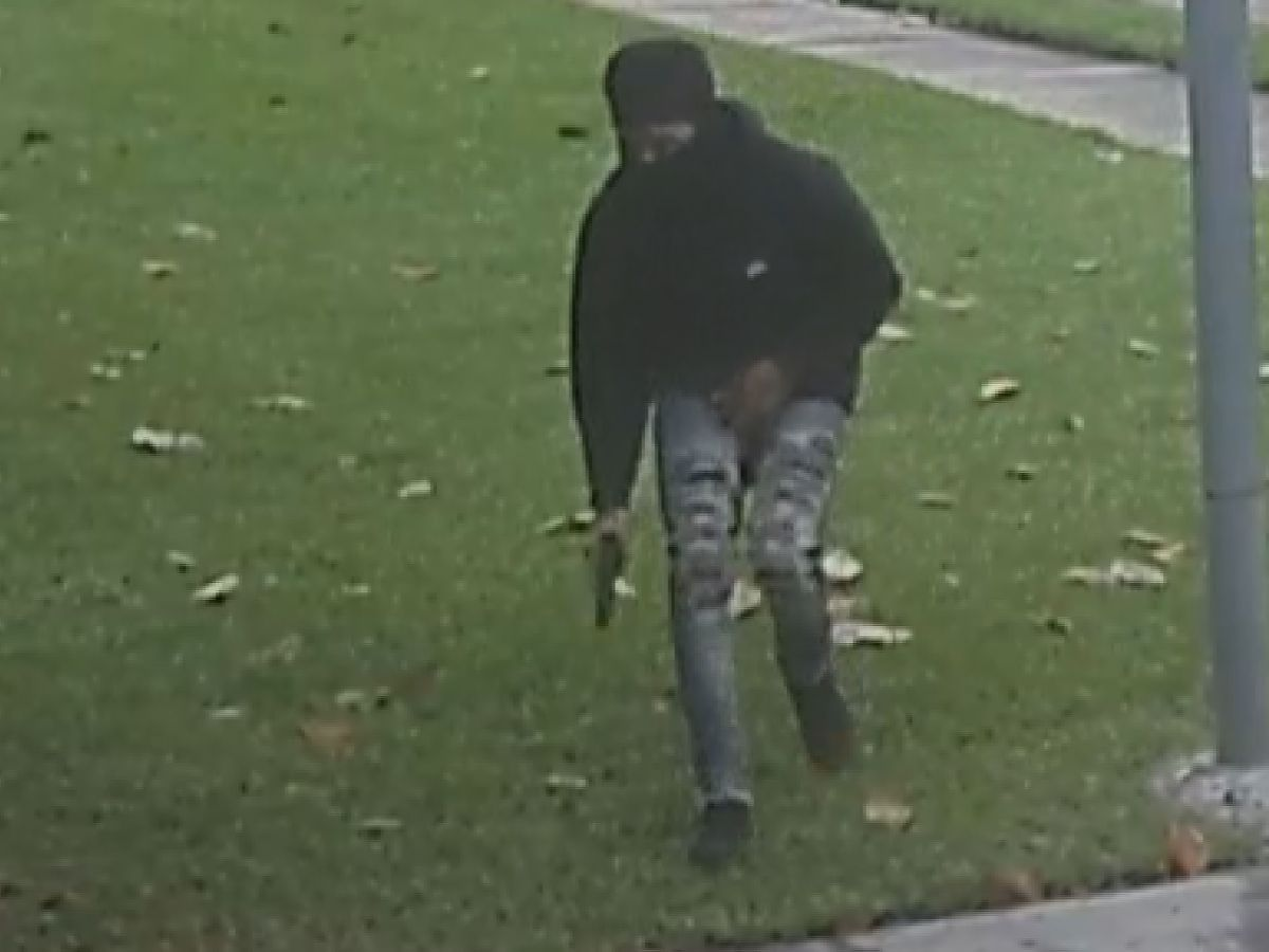 Surveillance video captures armed carjacker creeping up Lake Terrace driveway