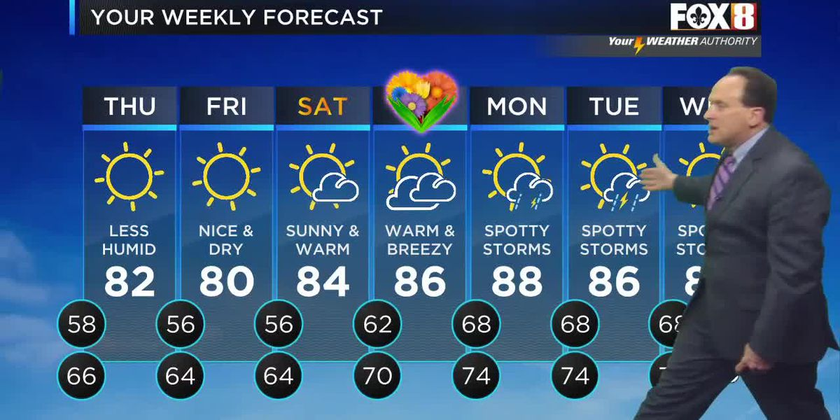 Bruce: Wednesday afternoon weather forecast