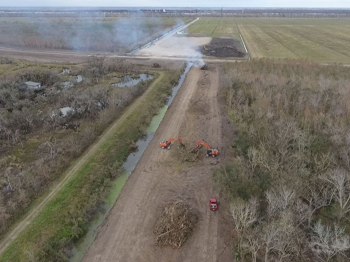 Eagles nest halts work on a portion of levee project in Plaquemines Parish