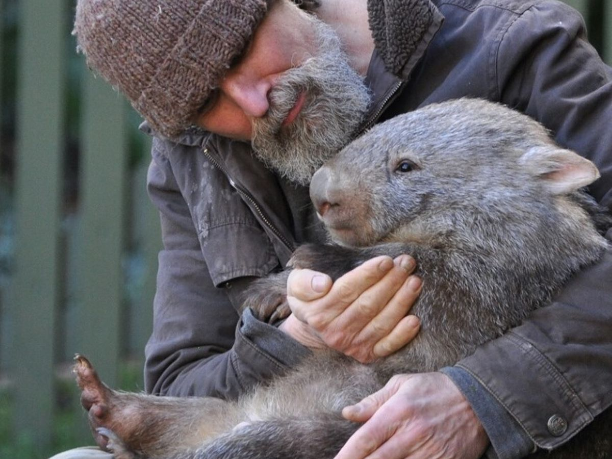 New Orleans native rescues animals from Australian fires, says there's a long road to recovery