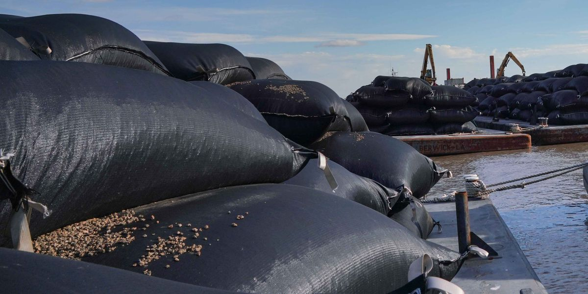 'Pillows' provide a new type of coastal protection for Louisiana