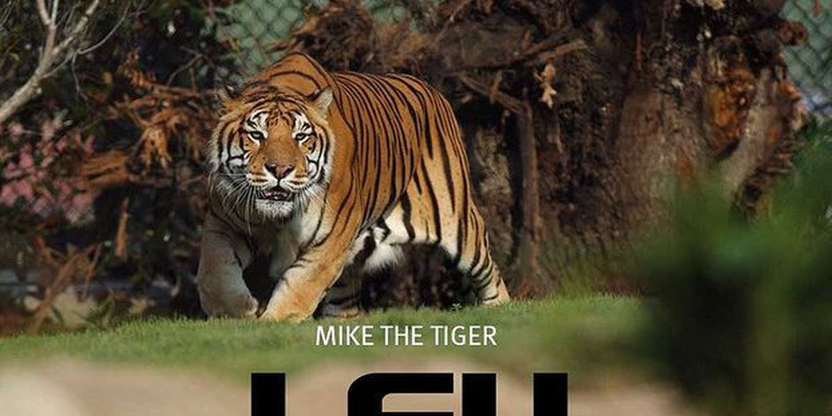 Petition: Retire Mike the Tiger as LSU's Mascot