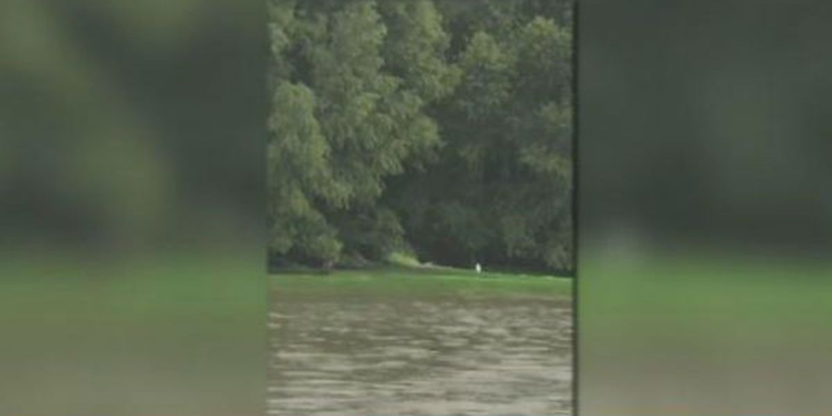Green dye in Mississippi River is safe, officials say