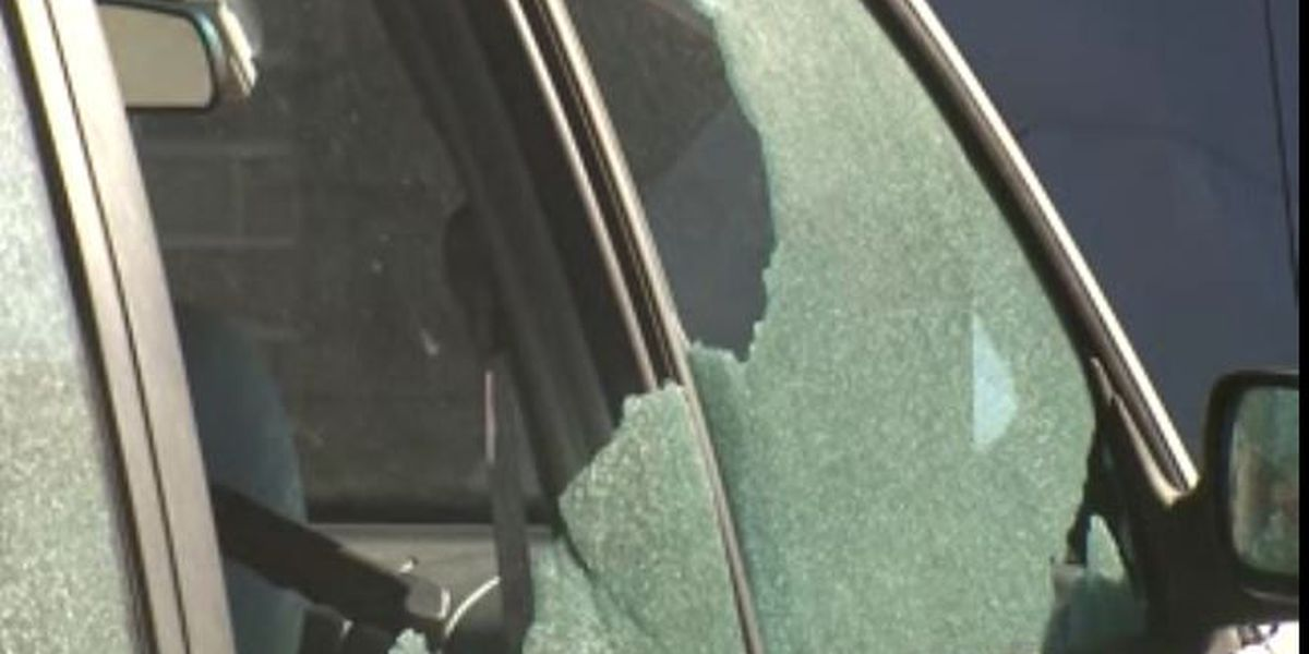 Marrero men plead guilty to shooting out car windows