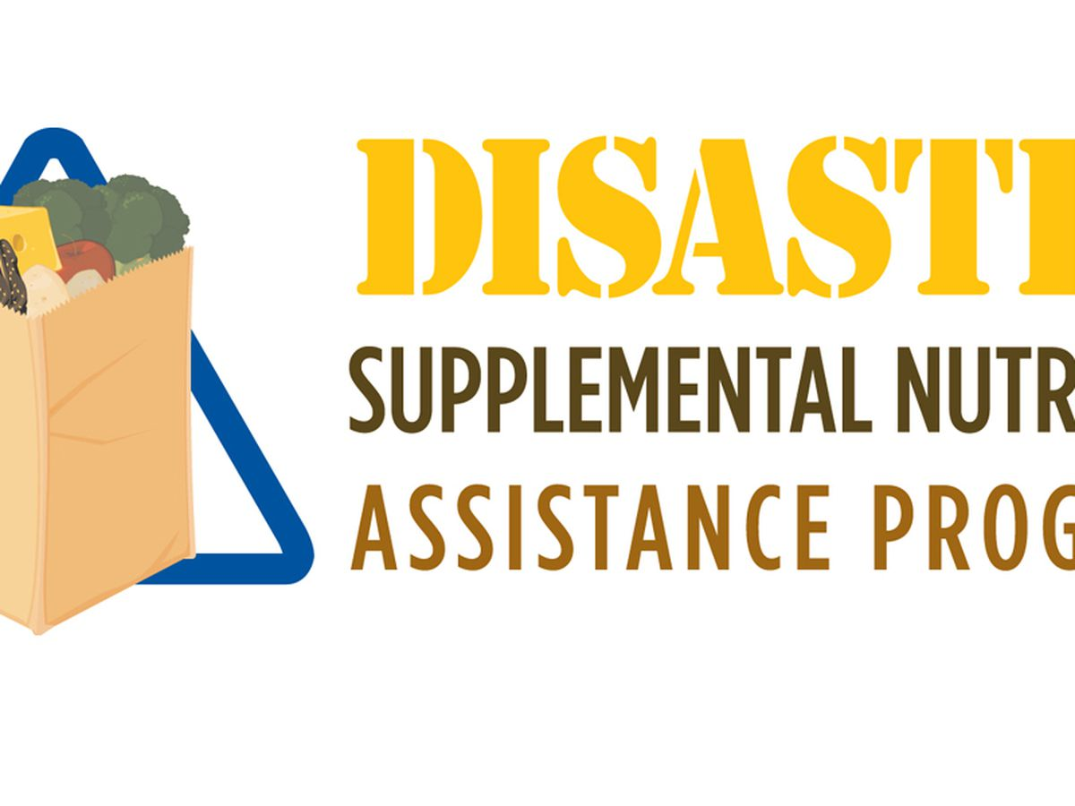 DSNAP approved for 23 parishes affected by winter storms