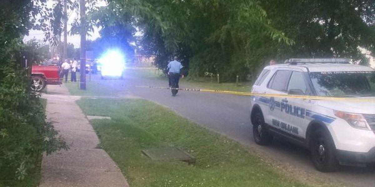 Male fatally shot in Milneburg neighborhood