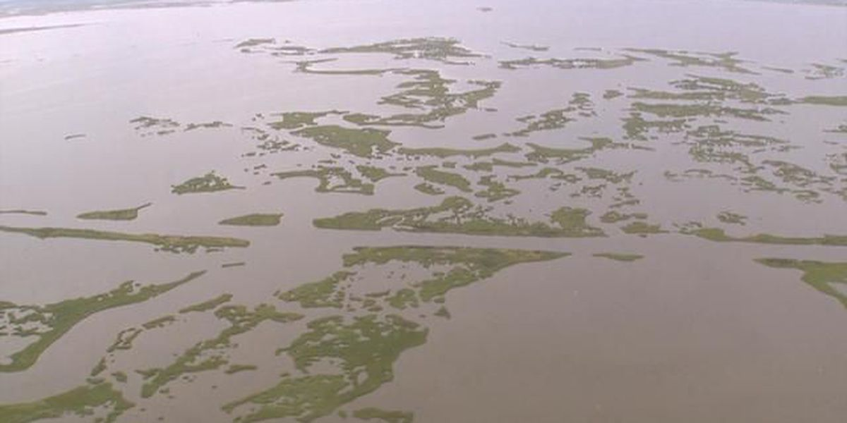 Louisiana coast money at risk in federal budget