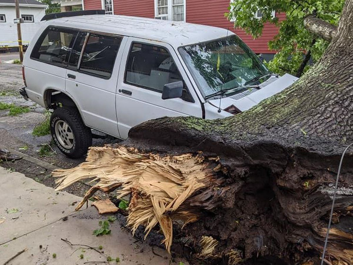 PHOTOS: Possible tornado downs trees, damages cars, homes in New Orleans