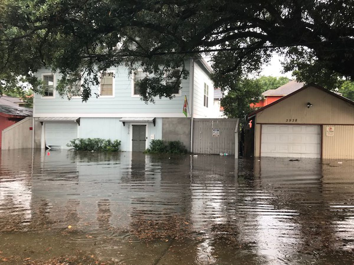 Sen. Cassidy and local lawmakers push for better National Flood Insurance Program