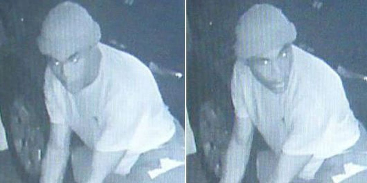 Surveillance video captures image of auto theft suspect