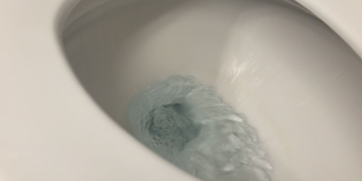 Quarantine 101: What not to flush, according to plumbing experts