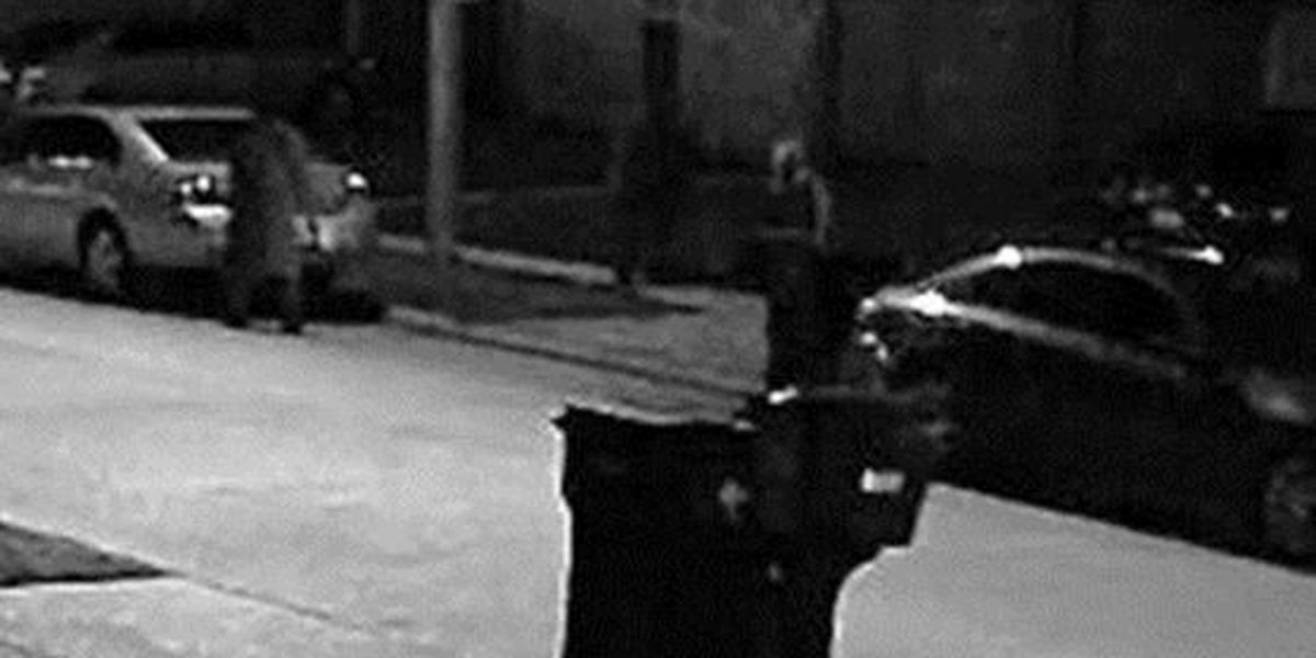 VIDEO: NOPD searching for several auto burglary suspects