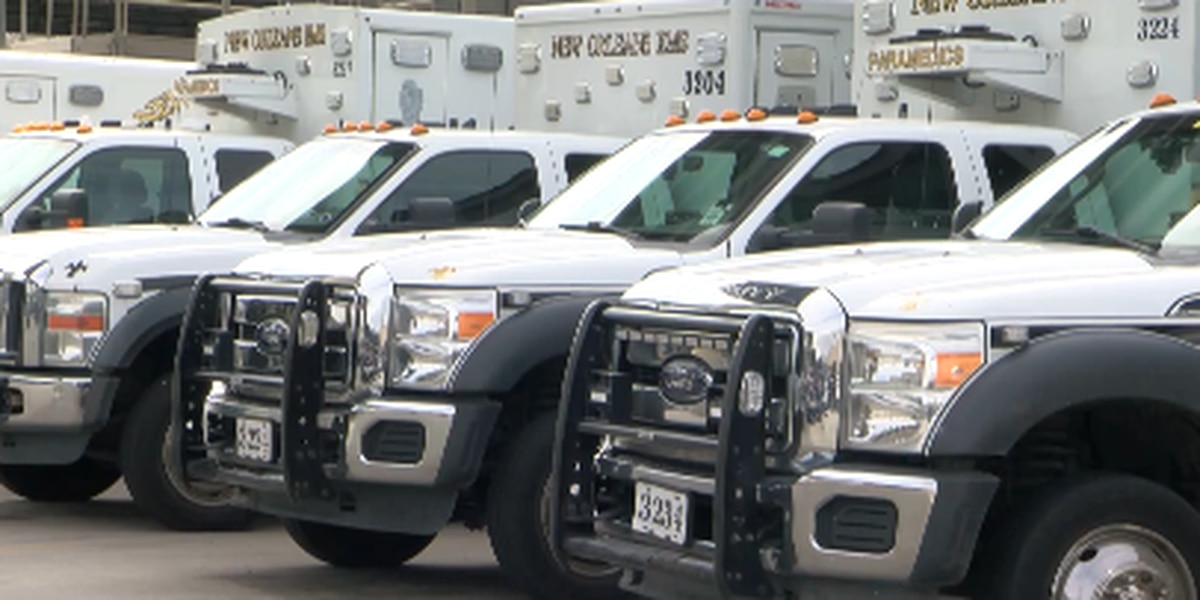 Medics discuss safety measures for Carnival, first aid stations along routes