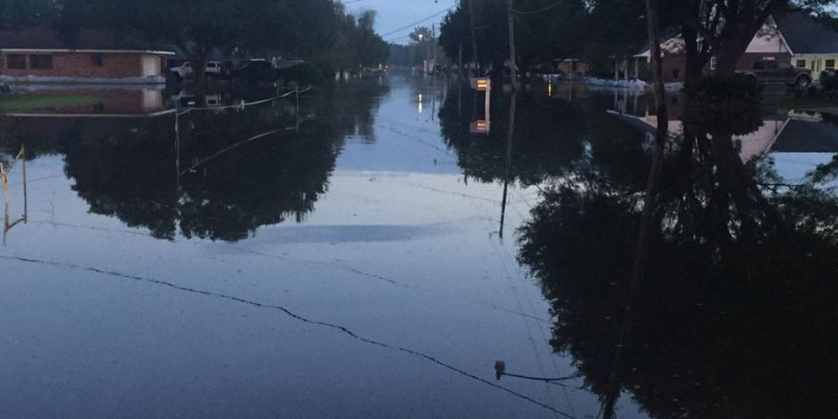 Latest gauge report shows Blind River not rising in St. James Parish