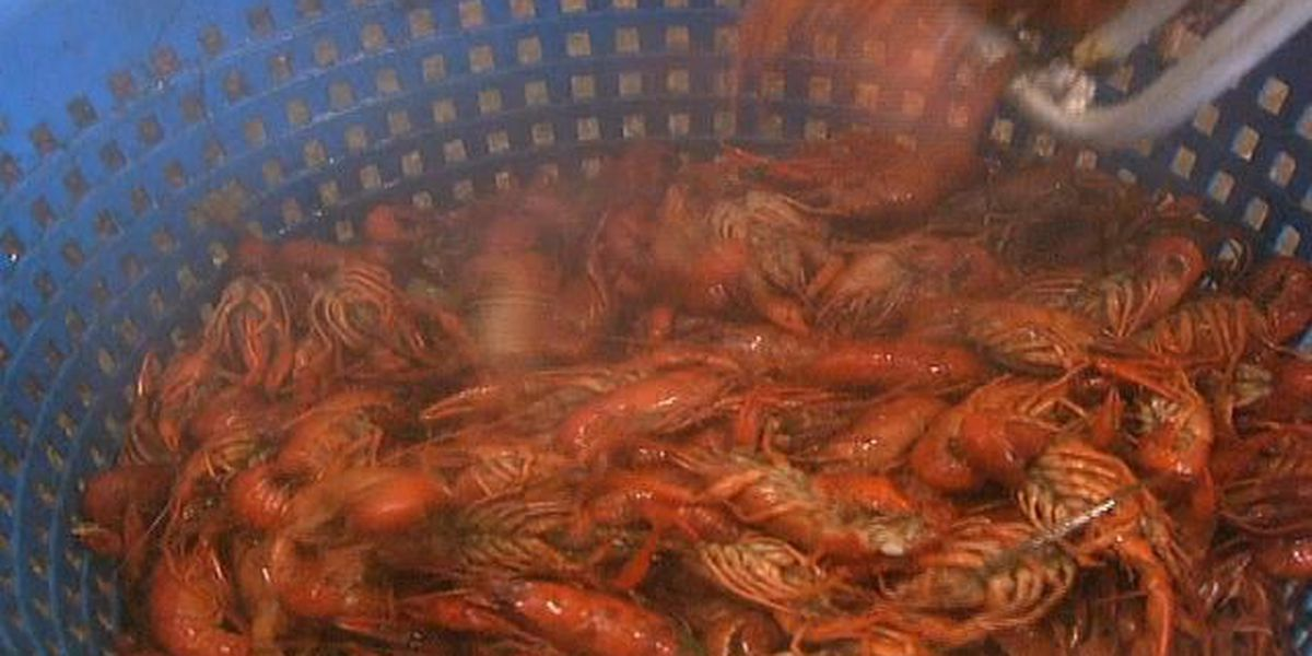 Customers swamp restaurants for Good Friday crawfish