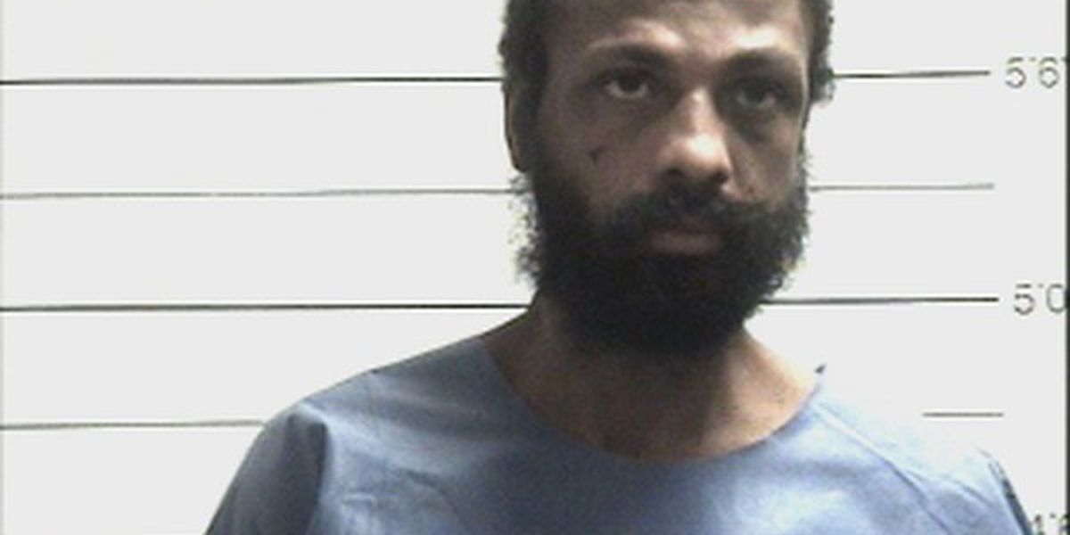 Officers punched by New Orleans man, report says