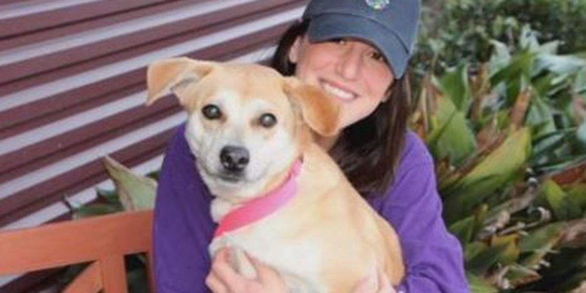 St. Charles Rescue Run Club volunteers keep pets healthy and active