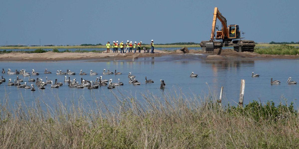 Freeport McMoRan agrees to big coastal damage settlement