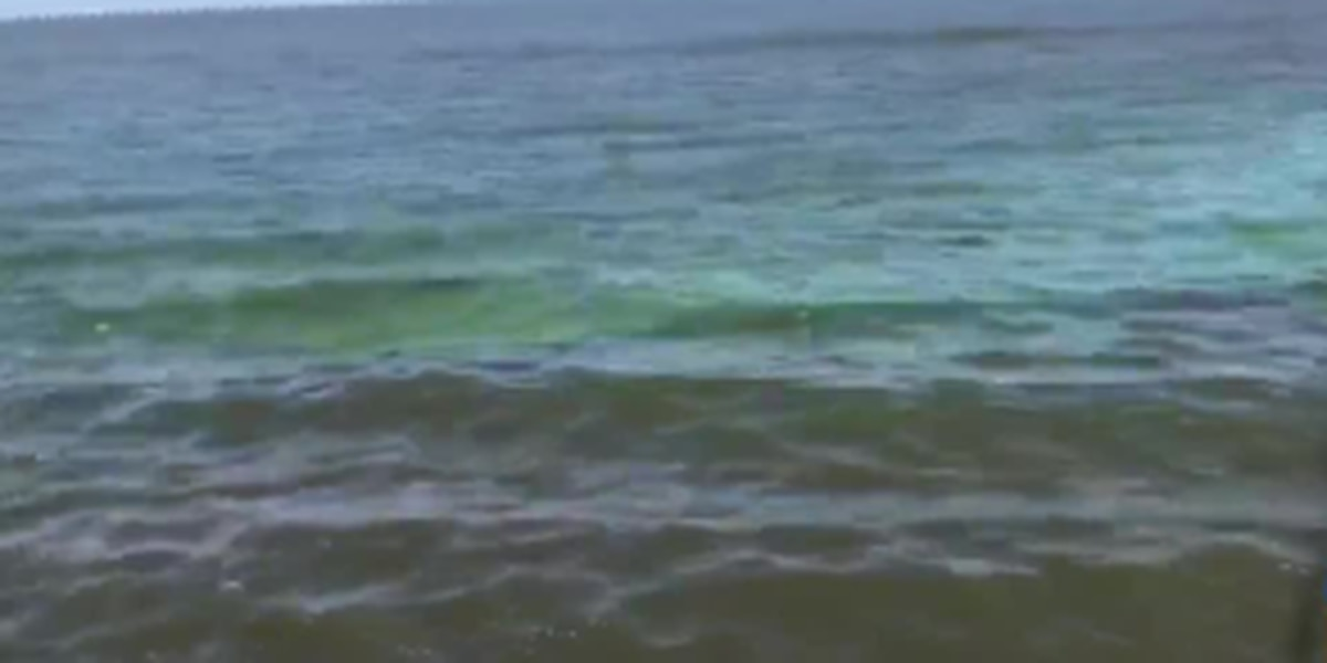 Spillway opening turns portions of Lake Pontchartrain green