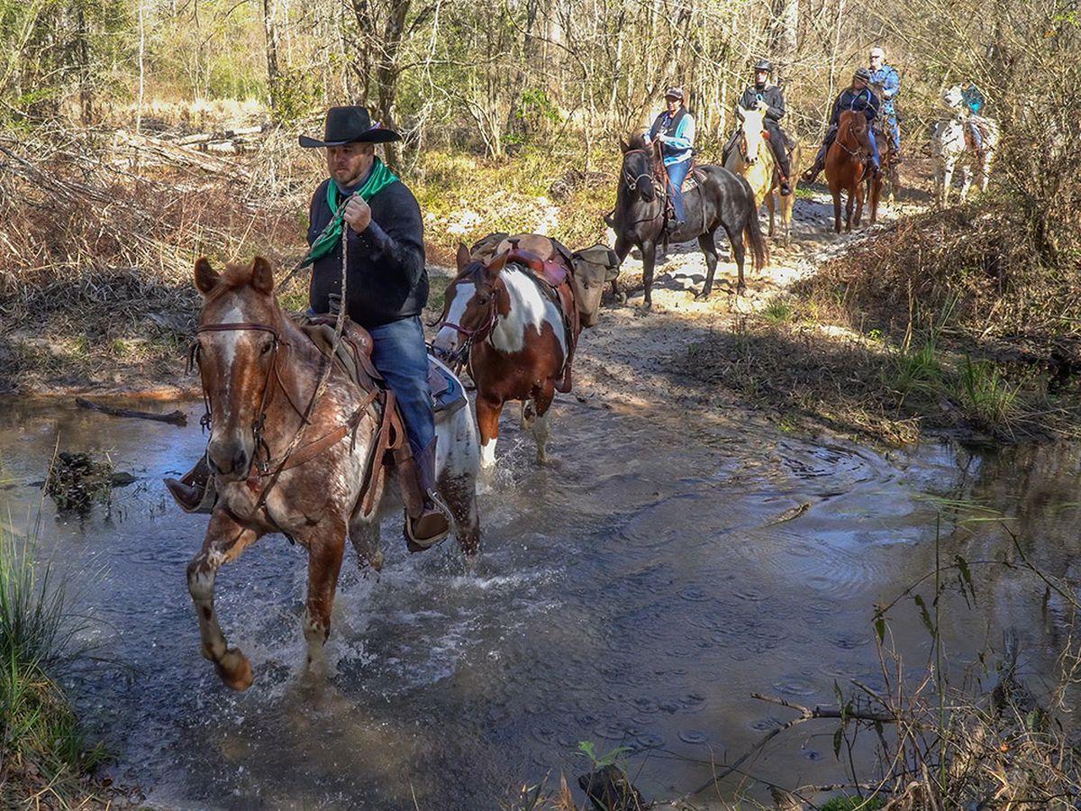 Heart of Louisiana: Bogue Chitto horse trails