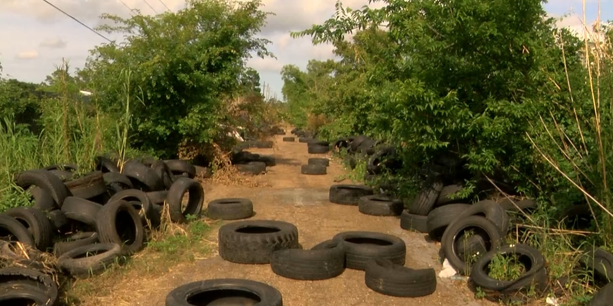 FOX 8 looks into viewer complaint, finds hundreds of tires littering Old Gentilly Road
