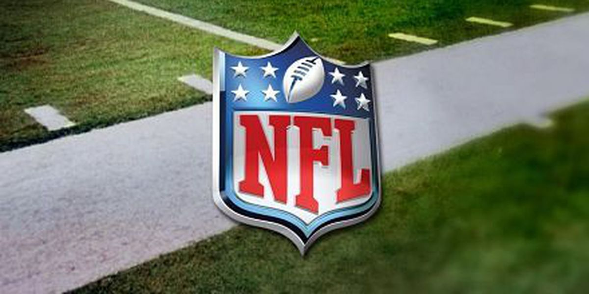 Veterans Day BBQ will feature NFL merchandise burn, Saints boycott