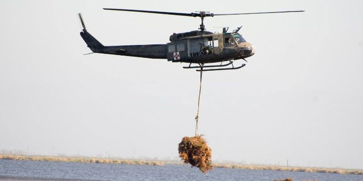 Christmas tree airlift to Bayou Sauvage to begin