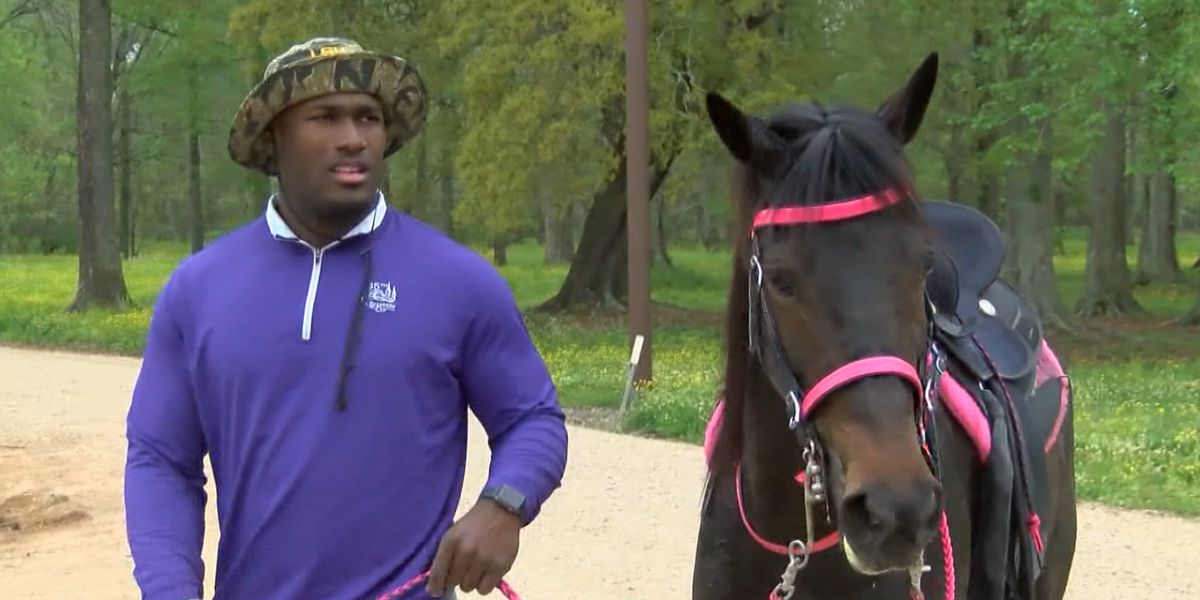 'Daisy Mae,' beloved horse of former LSU LB Devin White, dies from dehydration