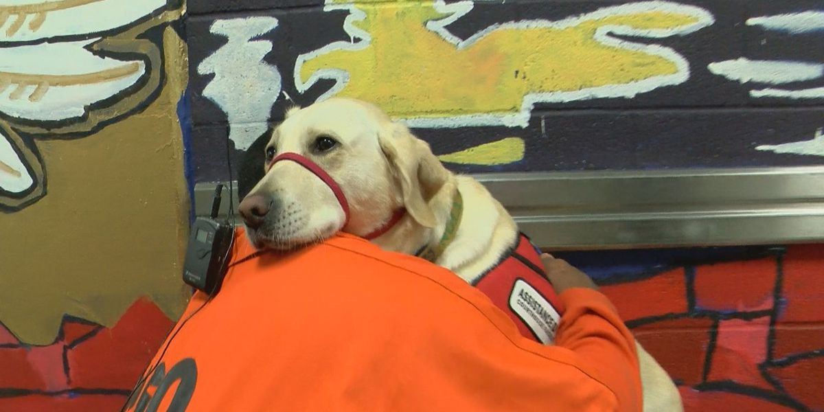Four-legged therapy comforts students at a rare school inside New Orleans jail