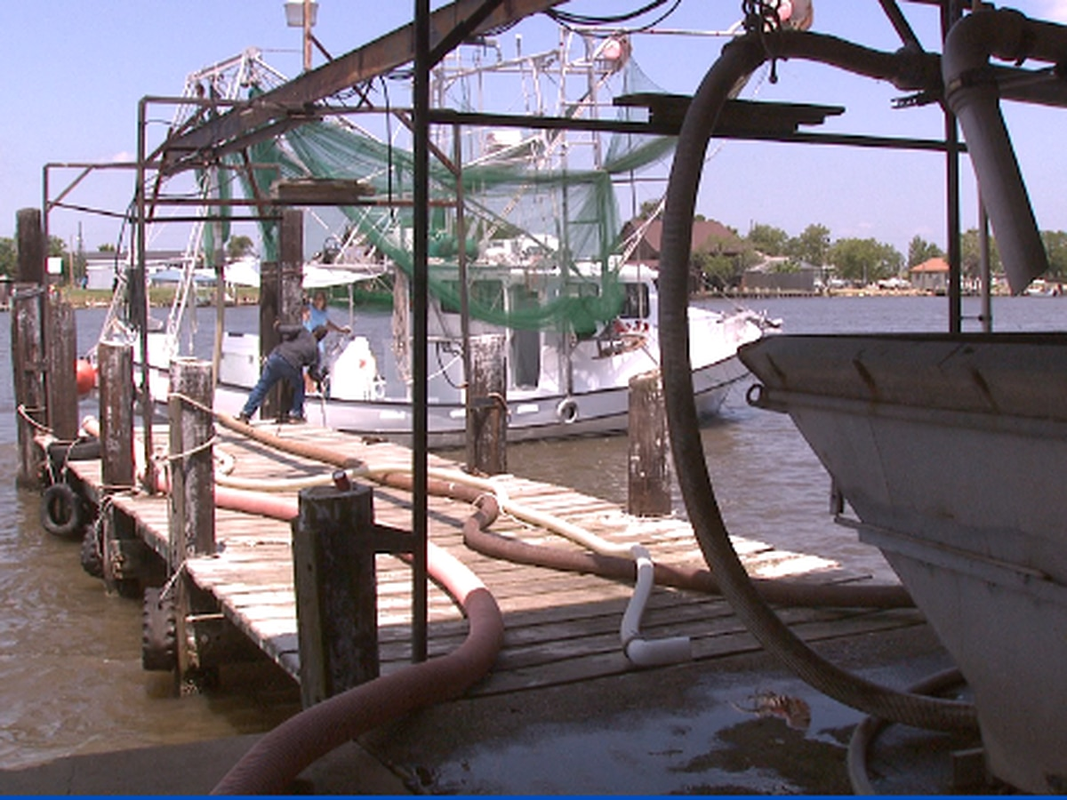 Louisiana seafood industry says adequate federal help is needed as the pandemic persists