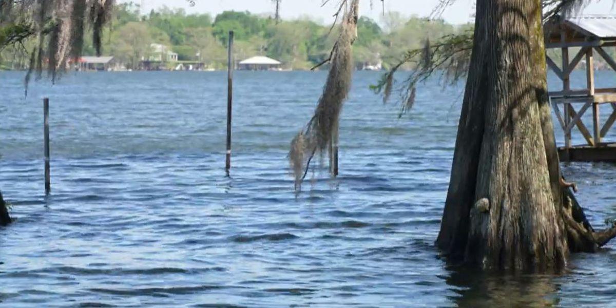 Heart of Louisiana: Lake Bruin State Park