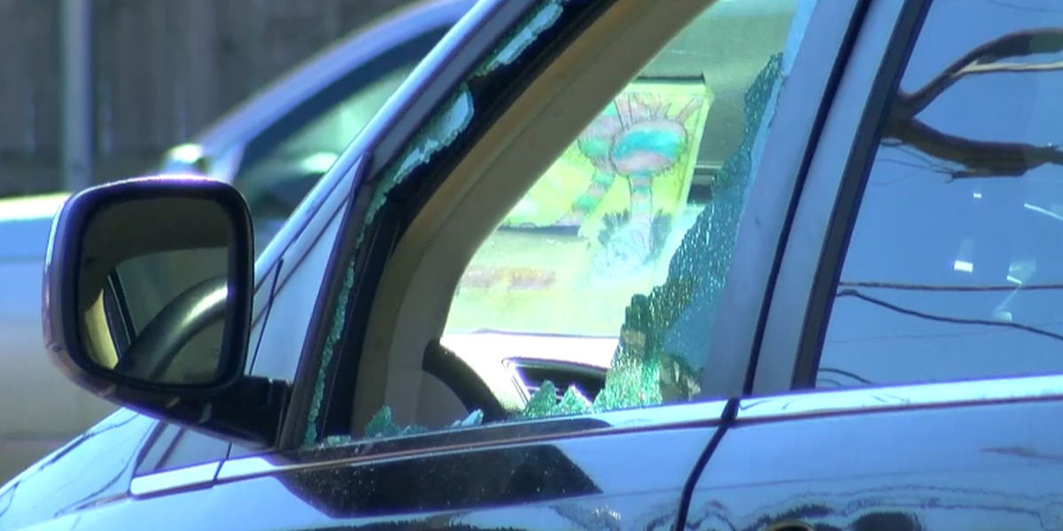 NOPD: At least 48 cars burglarized early Monday morning, many with smashed windows