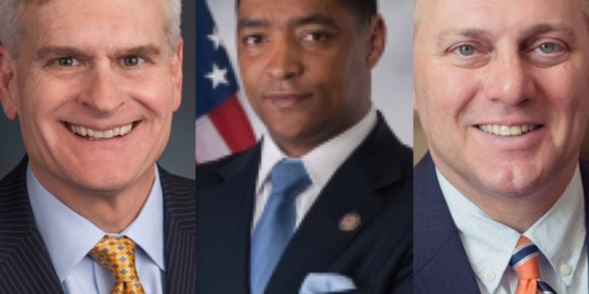 Louisiana congressmen talk police reform efforts; react to Trump's executive order