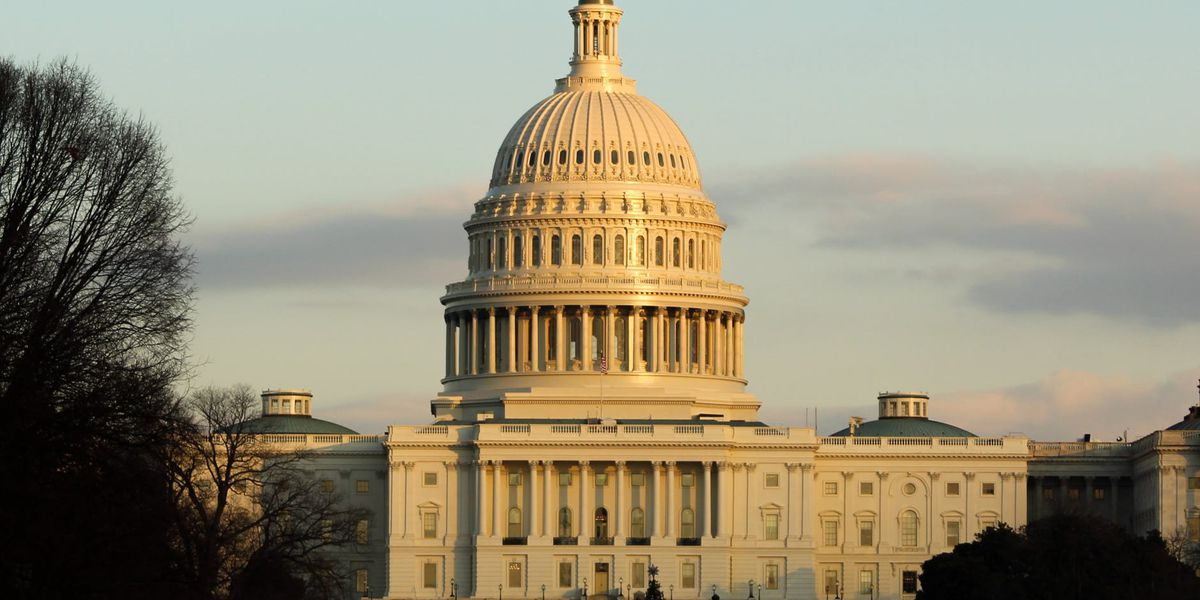 Sens. Cassidy, Kennedy split on Wednesday vote to certify Biden victory