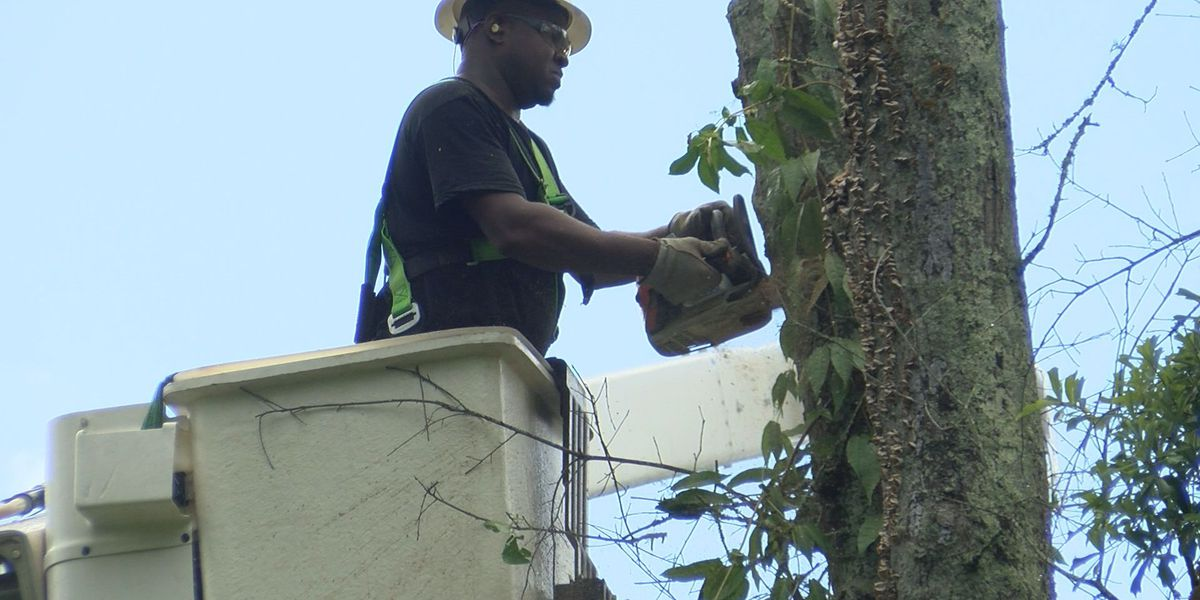 Thousands without power a week after Hurricane Zeta