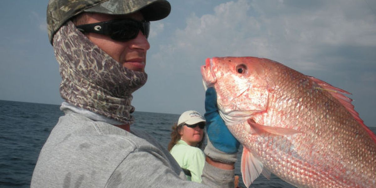 Big Fish Report: Red snapper season is open seven days a week for now