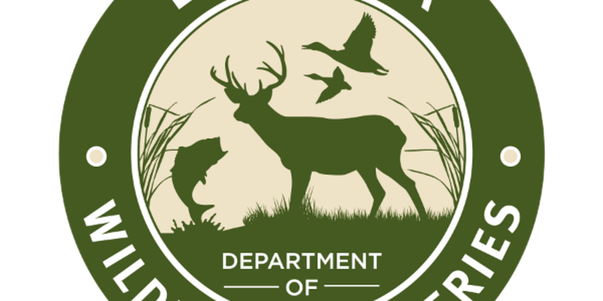 5 men arrested for hunting rabbits outside a law enforcement agent's house