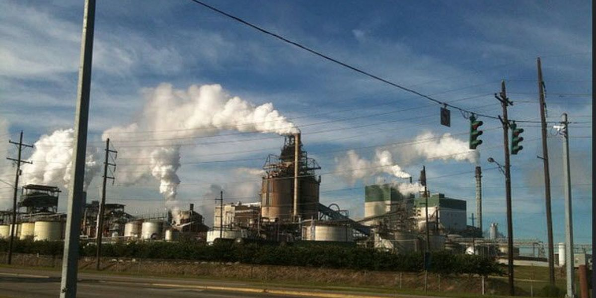 Cleanup underway after leak at Bogalusa paper mill