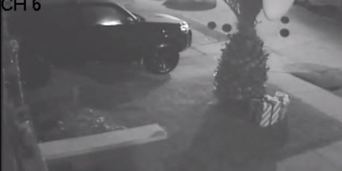 VIDEO: SUV stolen from driveway in Lakeview