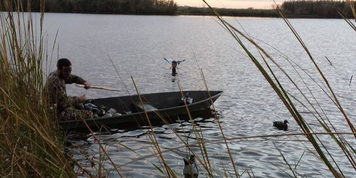 How to keep 3.1 million ducks in Louisiana this hunting season