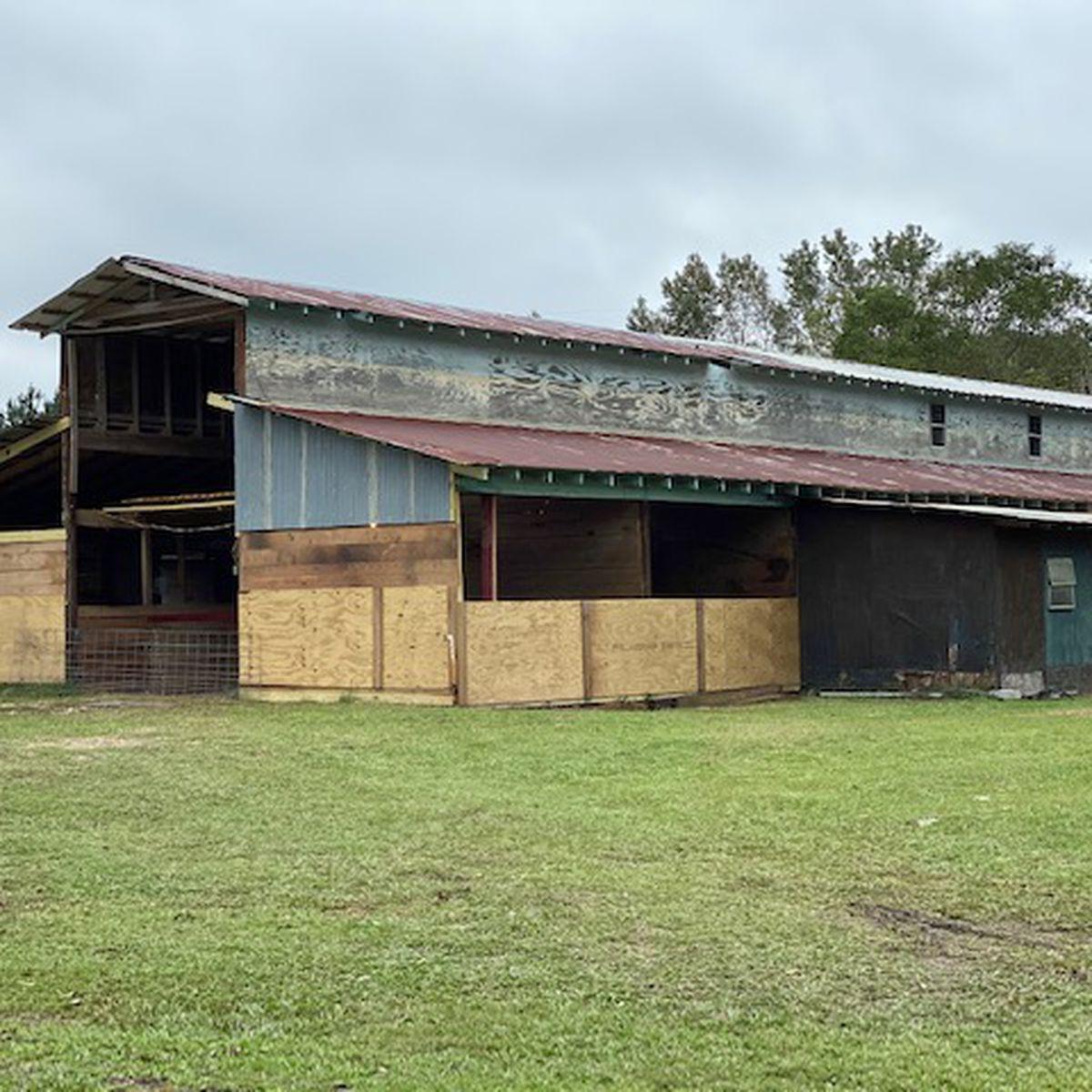 Gr8 Neighbor opens doors for students' farm animals