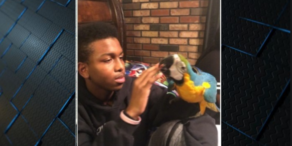 Teenager reported missing from Algiers Point