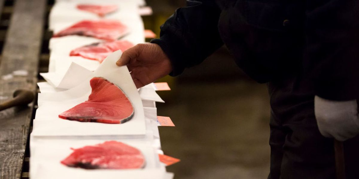 CDC: Raw Tuna Sold In New York, Connecticut Recalled Over Salmonella Concerns