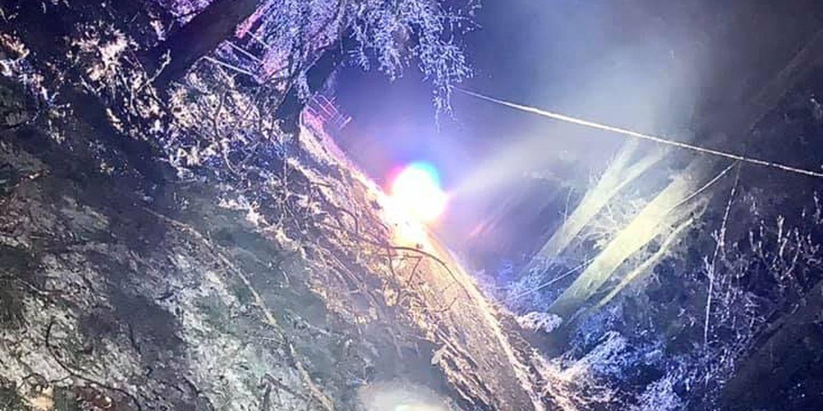 STRANGER THINGS: Deputies share eerie photos of Livingston Parish roads turned upside down by ice