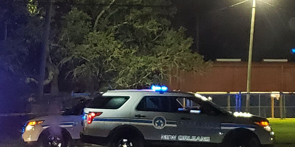 2 teens booked with murder in Hollygrove park shooting